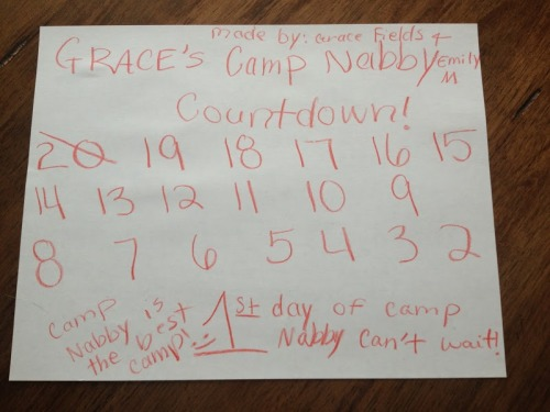 Grace's Camp Nabby Countdown